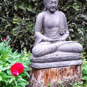 Buddhafigur Fluss Stein