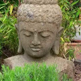 Buddha Büste Garten