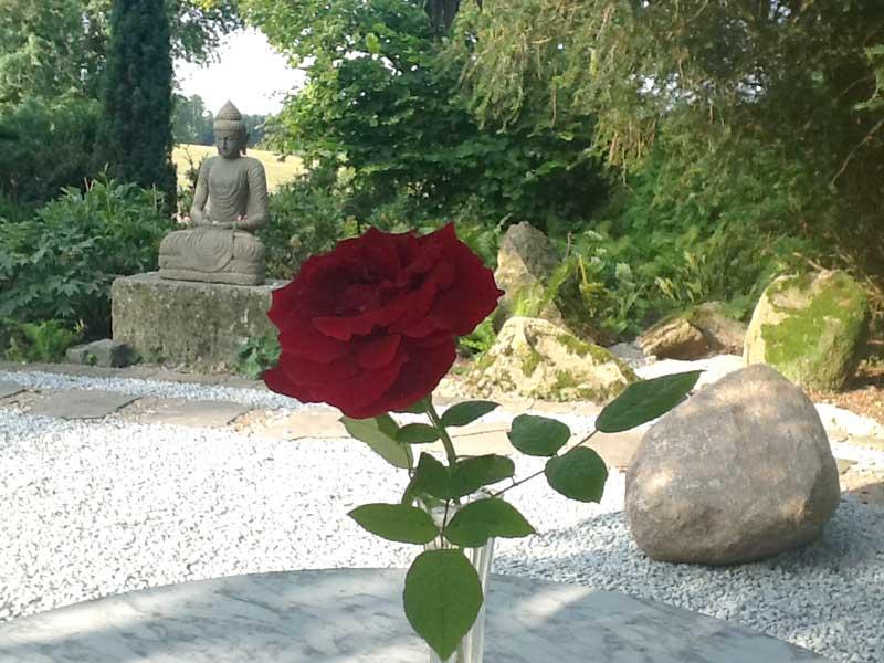 Buddha Figur mit Rose