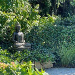 Buddhafigur auf Podest mit Efeu